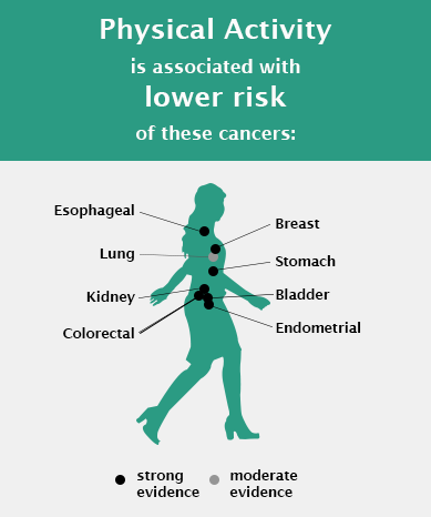 Inforgraphic depicting physical activity is associated with lower risk of these cancers: Esophageal, Breast, Lung, Stomach, Kidney, Bladder, Colorectal, Endometrial. Sedentary Behavior is associated with higher risk of these cancers: Lung, Colorectal, Endometrial. Citation: Patel et al. Medicine and Science in Sports and Exercise, 2019.